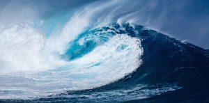 """Kviečiame dalyvauti virtualioje parodoje """"Ką slepia vandenynas?"""""""